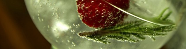 cropped-cropped-strawberry2.jpg